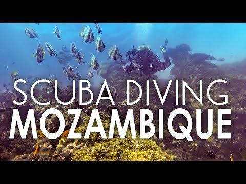 Scuba Diving Bazaruto Island in Mozambique