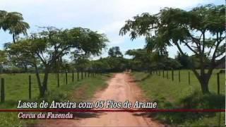 Fazenda Em Anaurilândia com 2.100 Hectares