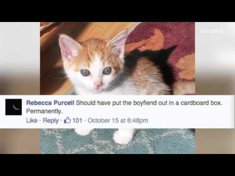 Abandoned kitten found with heartbreaking child's note