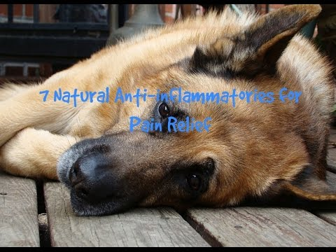 7 Natural Anti-inflammatories For Pain Relief