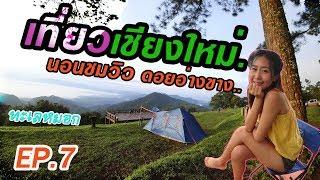 กางเต็นท์แค้มปิ้ง ดอยอ่างขาง ตะมุตะมิ เที่ยวเชียงใหม่ Ep.7 l Camp site in Chiang Mai, Thailand