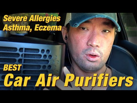 Best Car Air Purifiers for Severe Allergies, Asthma, & Eczema (HEPA, VOC, PM2.5) | Ep.232
