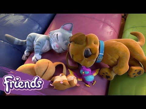 friends:-girls-on-a-mission-|-lego®-shorts-|-episode-5:-the-pet's-secret-mission