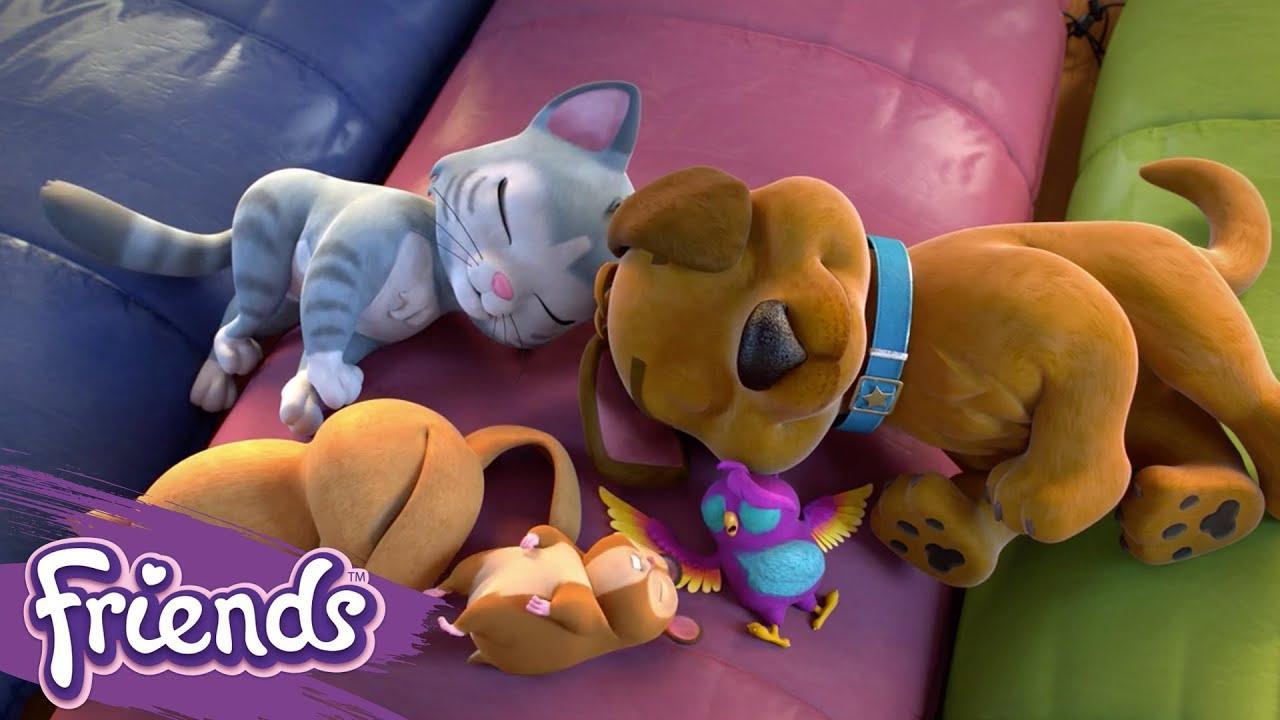 Download Friends: Girls on a Mission | LEGO® Shorts | Episode 5: The Pet's Secret Mission