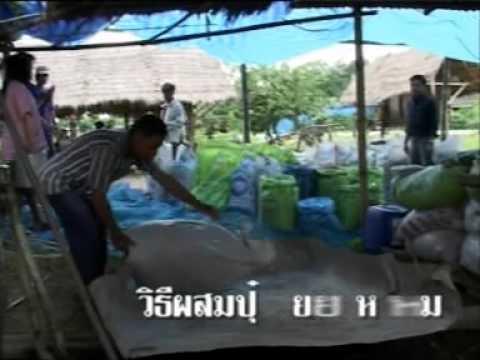 การทำปุ๋ยหมัก โดยสำนักงานกองทุนสงเคราะห์การทำสวนยางอำเภอละงู
