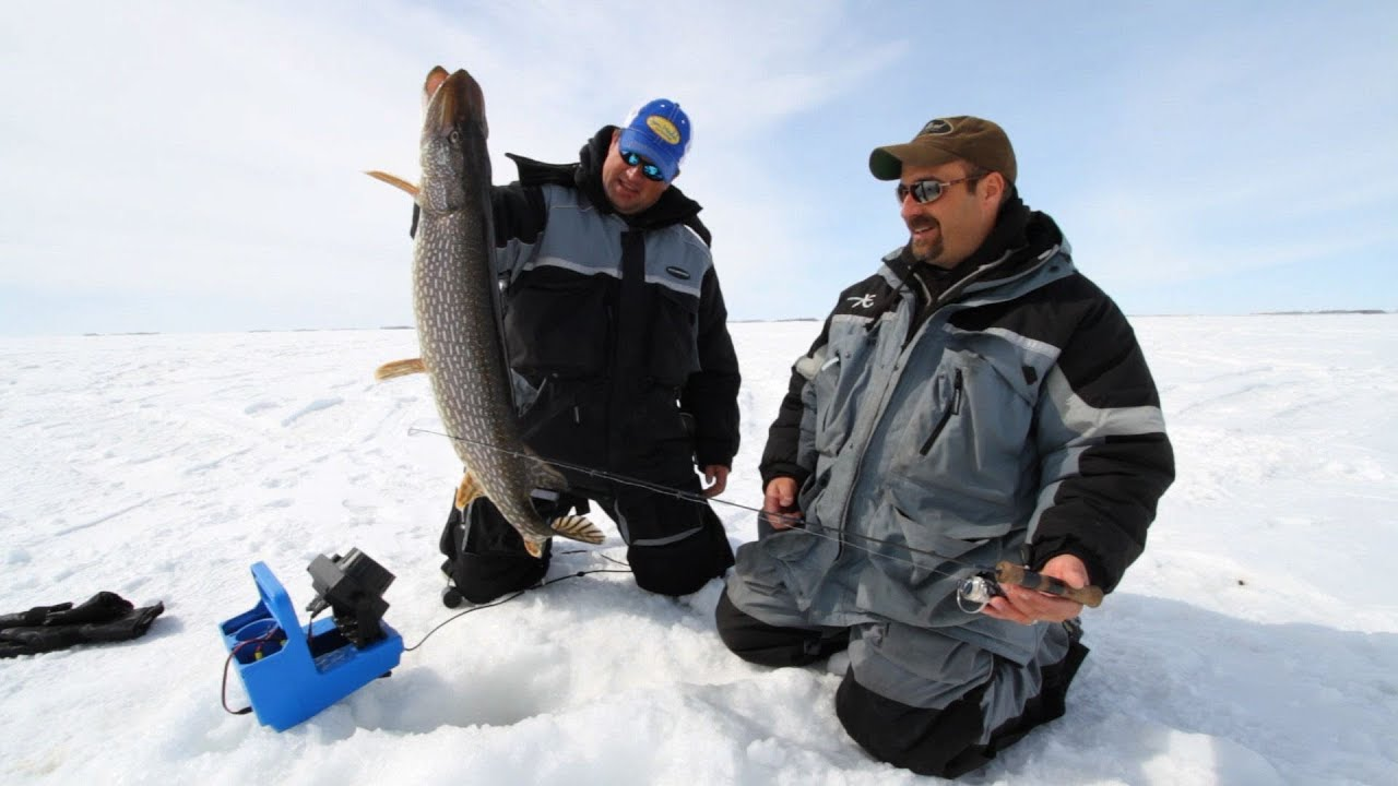 Finding jumbo perch and walleyes on devils lake north for Devils lake north dakota fishing report