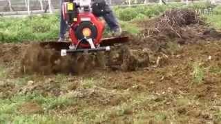 Gasoline/diesel engine/ generator/ water pump/ mini tiller/cultivator/agriculture machine