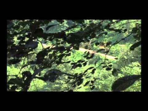 İsmail & Tolga Vurgun - Çalın Davulları [ Roman Olsun © 2008 Kalan Müzik ]