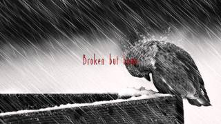 Common Linnets -  Broken But Home Lyrics