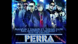 Download Alkapon Falkon Ft Ñengo Flow Ft Emil Autentiko El Imparable - Perra (Official Remix) MP3 song and Music Video