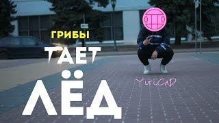 Грибы - тает лёд (премьера клипа 2017) Yuri.CaD