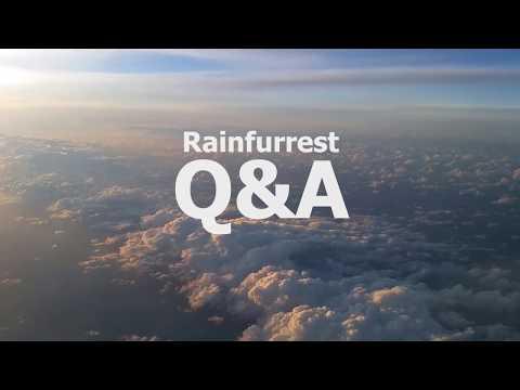 Rainfurrest Q&A