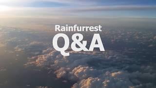 (Reupload) Rainfurrest Q&A