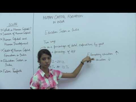 Human Capital Formation in India _ Part5 _ Education Sector in India _ Kavya Singhal