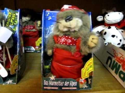 Marmotte dansante suisse