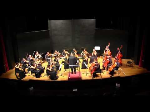 Lorenzo Castriota Skanderbeg -  Karşiyaka Chamber Orkestra 8 Feb 2016