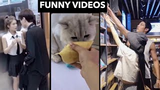 HOW WILL A CAT REACT TO DURIAN? 🤣