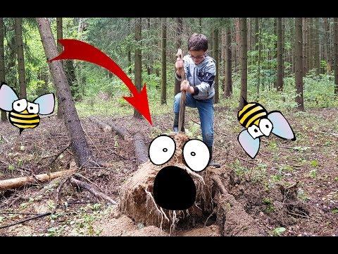 Монстр-дерево в лесу! Мы заблудились! Приключение Егора