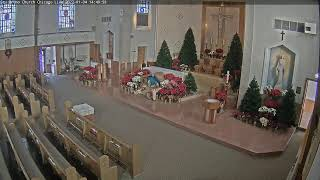 Preview of stream St. Bruno church in Chicago, USA