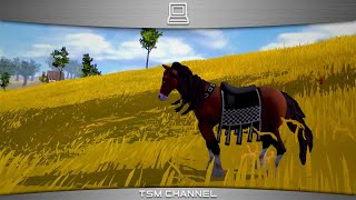 Steed (Horse Game)