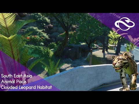 Clouded Leopard habitat   Planet Zoo South East Asia Animal Pack  