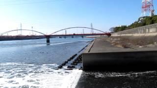 千鳥橋西側排水路 北岸西側 シーバス セイゴ 天白川 釣りポイント