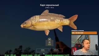 Трансляция игры Russian Fishing 4 Рыбалка на озере Медвежка