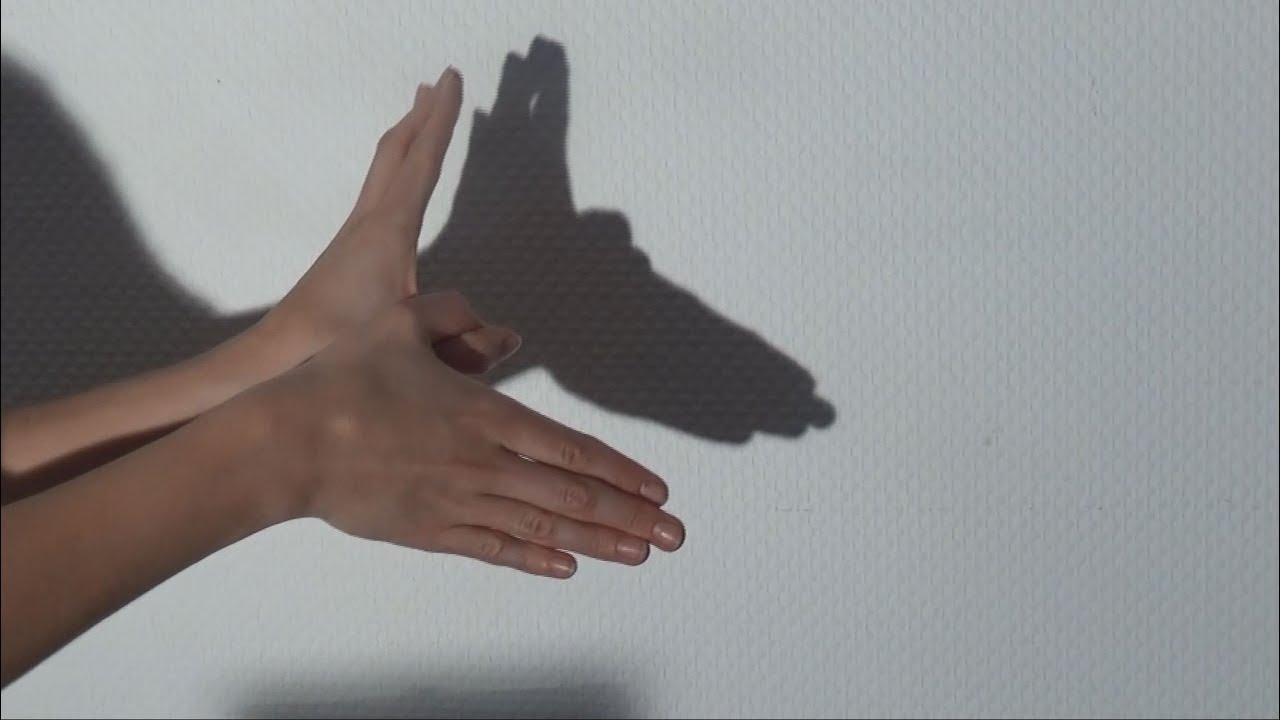 Schattenspiele mit den h nden selber machen eine anleitung youtube - Schattentheater selber machen ...