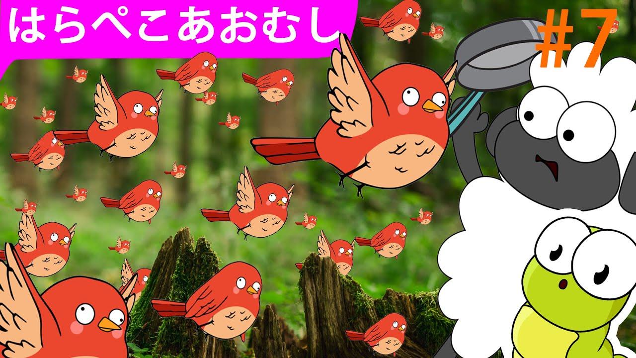 はらぺこあおむし   エピソード7   超大国の毛虫   大きな鳥の群れ   The Very Hungry Caterpillar   ZUZUDO