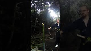 試し斬り竹