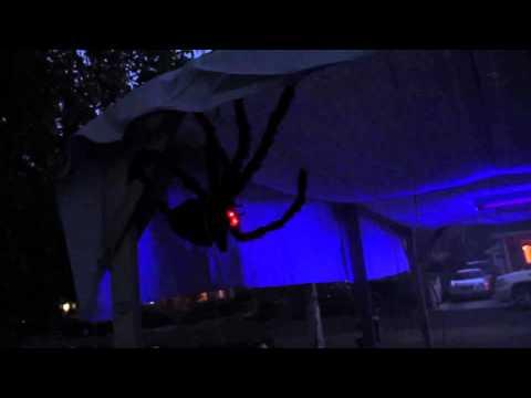 Halloween Menlo Park