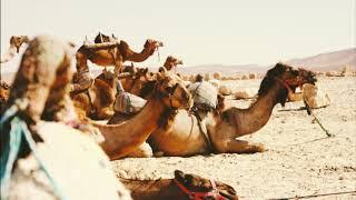 Kisah Nabi Muhammad SAW - Episode 19 (Mahar,Walimah,dan Salam Allah untuk Khadijah)