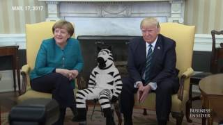 Trump and Merkel's awkward moments #JustAddZebras