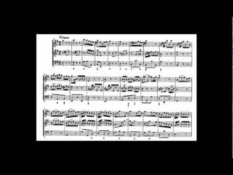 Telemann Trio Sonata in e minor for Flute, Oboe and Continuo, TWV 42:e2