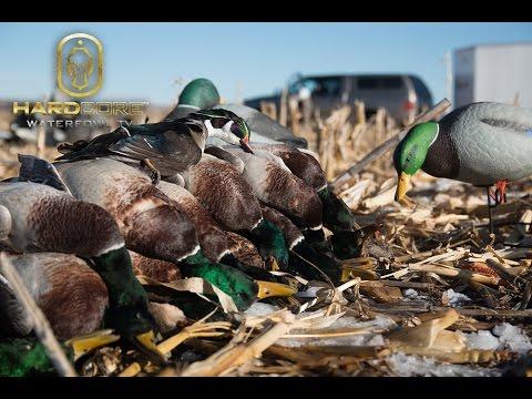 Dry Field Duck Hunting: Hard Core Waterfowl TV Episode 6