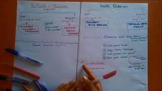 MALİYET MUHASEBESİ- 3 (Direkt- Endirekt ayrımı, Fazla çalışma mesaisi ve primi)
