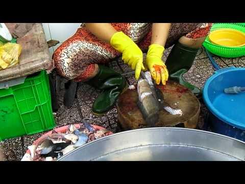 Skillful Worker In The Fish Market In Vietnam