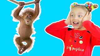 Диана и Полина приехали в зоопарк – развлечения для детей