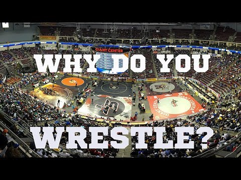 Top Pennsylvania Wrestlers Answer The Question 'Why I Wrestle'