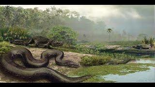 Самые опасные в мире животные׃ крокодилы, акулы, ядовитые пауки, змеи и медузы  Австралия