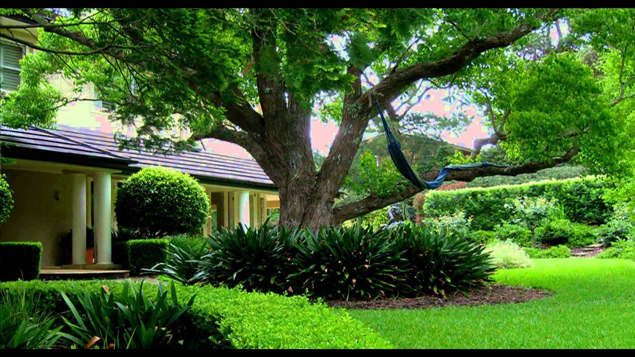 Garden Design Sydney Living Colour Landscapesavi YouTube
