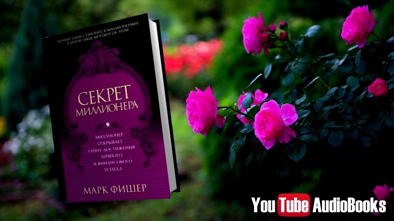 Скачать бесплатно книгу секрет миллионера