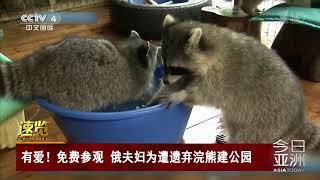 [今日亚洲]速览 有爱!免费参观 俄夫妇为遭遗弃浣熊建公园| CCTV中文国际