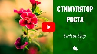 Стимуляторы роста растений 🍀 Какие использовать? Советы от эксперта