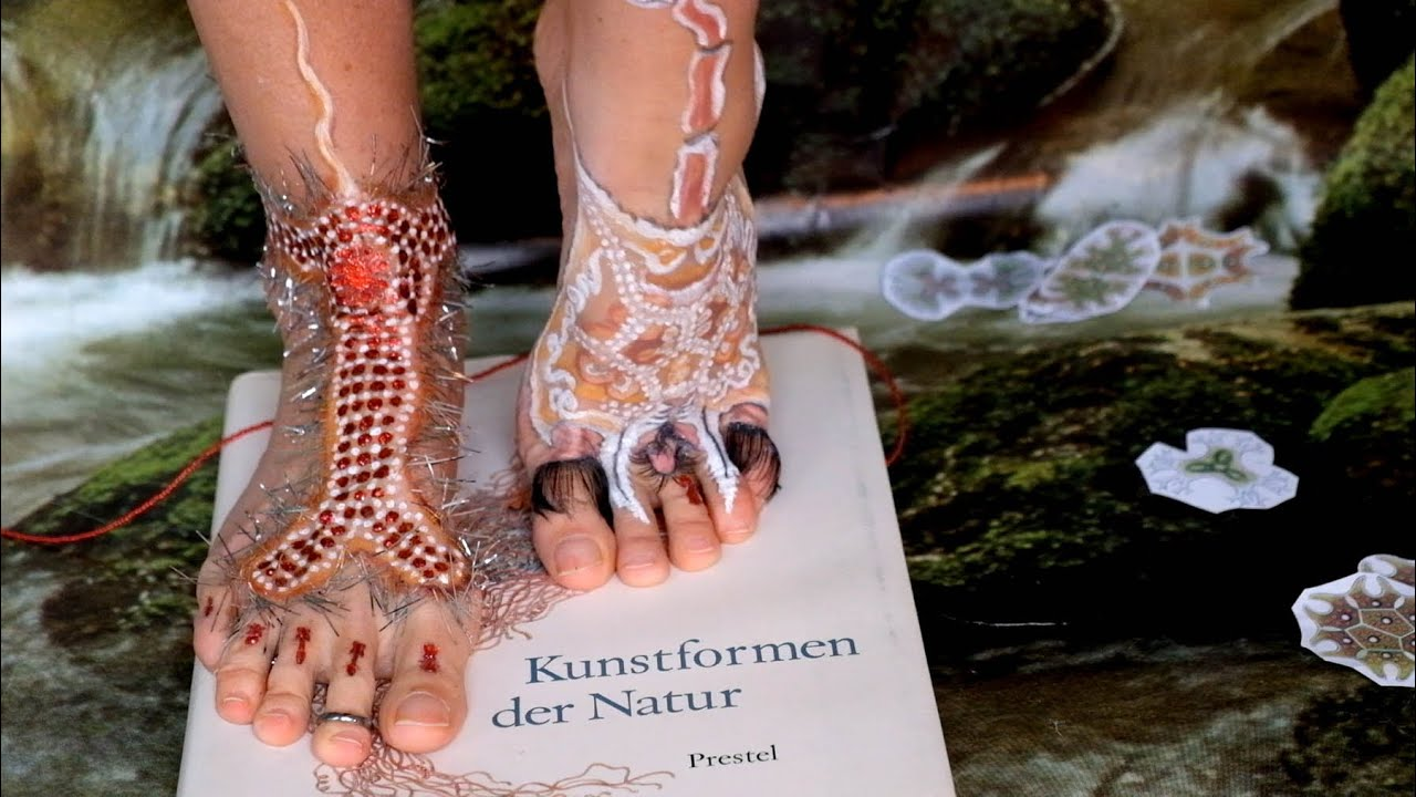 The Encounter - a video by Nadine celebrating the extravagance of Nature