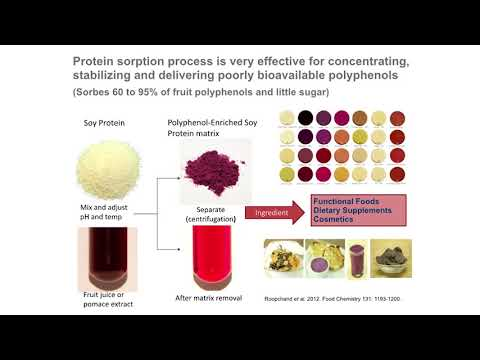 Health Effects of Phytochemicals from Foods