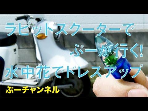 ラビットスクーターでぶーが行く! 水中花でドレスアップ FUJI RABBIT SCOOTER & CUSTOM 【ぶーチャンネル(boo channel)】