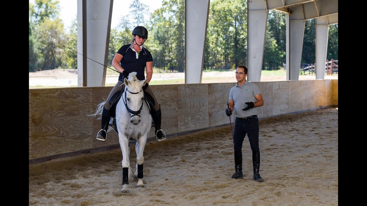 7 things you should be getting from your horse trainerriding 7 things you should be getting from your horse trainerriding instructor 1betcityfo Gallery