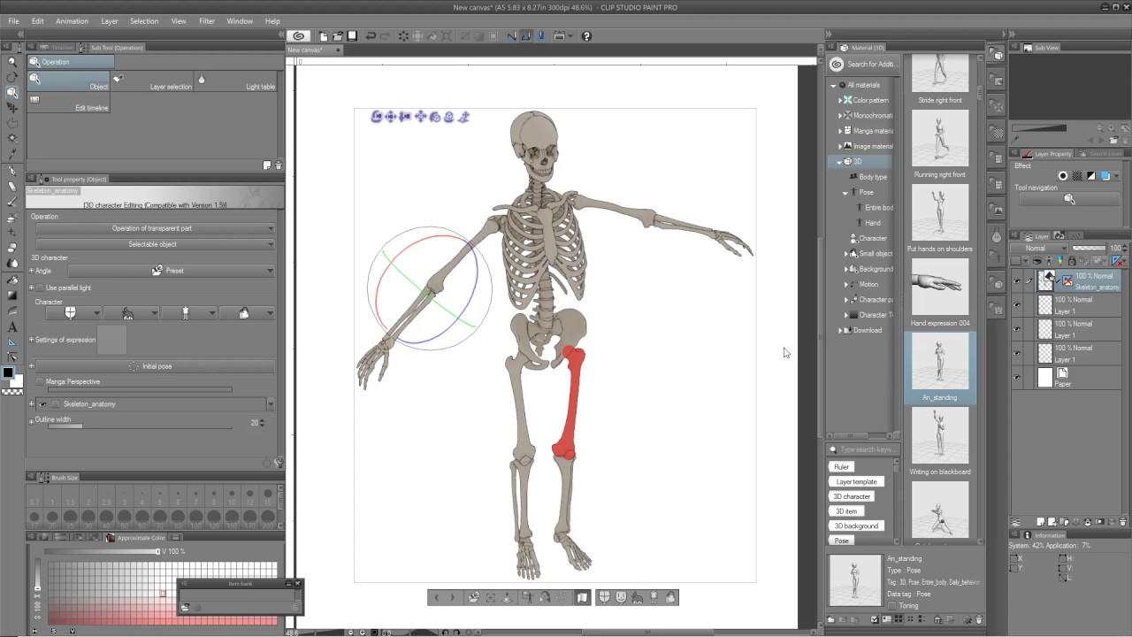 Poseable 3d Skeleton Anatomy Model For Clip Studio And Manga Studio