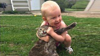 아기와 고양이의 사랑스러운 우정  고양이와 아기 동영상